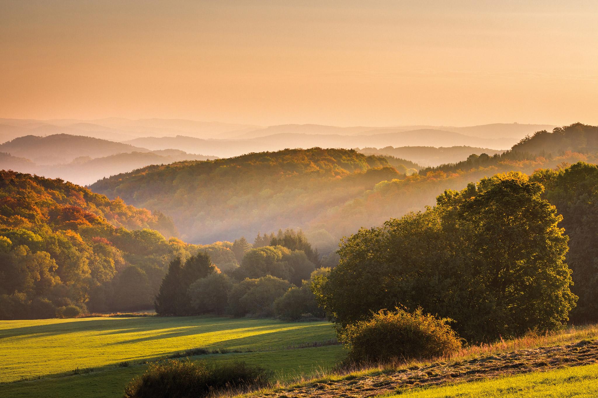 Herbstmorgen bei Gusternhain | Foto: Johannes Willwacher